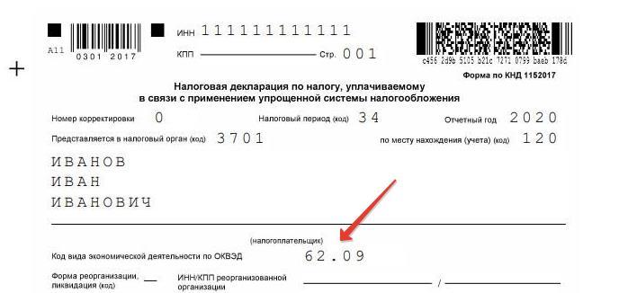 """Пример заполнения ОКВЭД в декларации по УСН """"Доходы"""""""